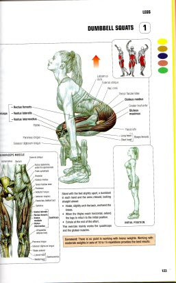 Dumbbell Squats from Strength Training Anatomy